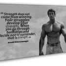 Arnold Schwarzenegger Bodybuilding Fitness Motivational Quote 20x16 FRAMED CANVA