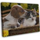 Puppy And Kitten In Basket Photo 20x16 Framed Canvas Print
