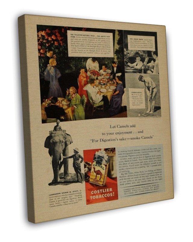 Vintage Camel Costlier Tobacco Cigarette Smoking Ad Art 20x16 Framed Canvas Prin