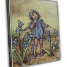 Cicely Mary Barker Bluebell Fine Art 20x16 Framed Canvas Print