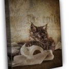 Cat With Toilet Roll Art Image 20x16 Framed Canvas Print