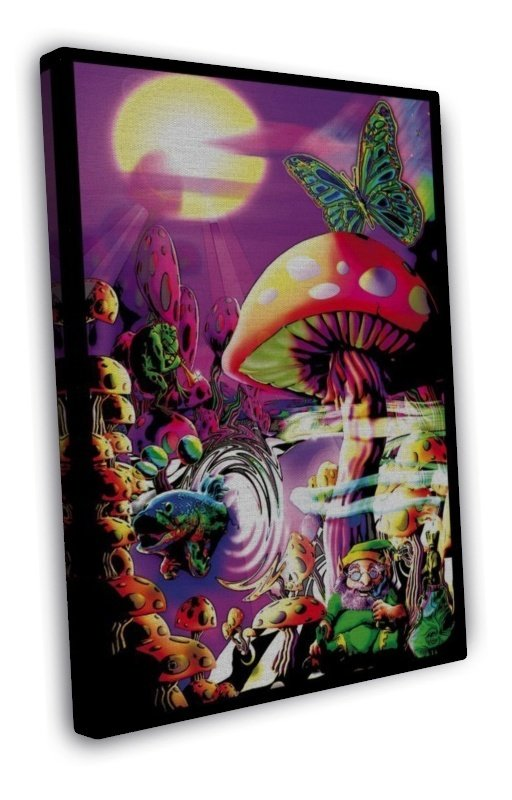Mushrooms Trippy Art Art 16x12 Framed Canvas Print Decor