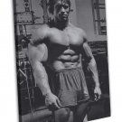 Arnold Schwarzenegger Bodybuilder Mr Olym Art 16x12 FRAMED CANVAS Print Decor