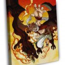 Fairy Tail Natsu Dragneel Cool Amazing Art Anime Manga WALL FRAMED CANVAS PRINT 20x16 inch