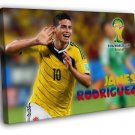 James Rodriguez Celebration Colombia Soccer Football WALL  20x16 FRAMED CANVAS PRINT