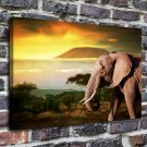 Slon Derevya Afrika Decor  20x16 FRAMED CANVAS PRINT