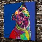 Colorful dog Animal Decor  20x16 FRAMED CANVAS PRINT
