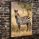 Nature Zebra Animals  20x16 FRAMED CANVAS PRINT