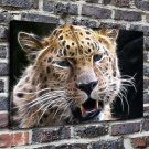 Roaring leopard Painting  20x16 FRAMED CANVAS PRINT