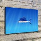 Animals & fish  20x16 FRAMED CANVAS PRINT