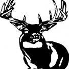 Whitetail Deer 1 - custom vinyl graphics  6x5 inch