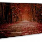 Morning Sunbeam Forest Nature Path Wall Decor 16x12 FRAMED CANVAS Print
