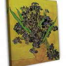 Van Gogh Still Life Vase With Irises Against A Yellow Background 16x12 Framed Ca
