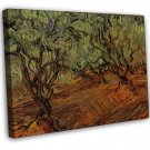 Van Gogh Olive Grove Bright Blue Sky 16x12 Framed Canvas Print