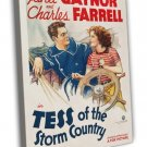 Tess Of The Storm Country 1932 Vintage Movie FRAMED CANVAS Print 2