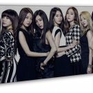 Girls Generation Women S Singing Group Art 20x16 FRAMED CANVAS Print Decor