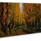 Morning Sunbeam Forest Nature Path Wall Decor 20x16 FRAMED CANVAS Print