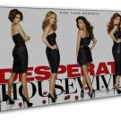Desperate Housewives Tv Show Art 20x16 Framed Canvas Print Decor