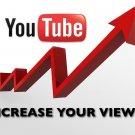 5000-6000 YouTube Views