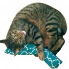 "15"" Giant Catnip Cat Kicker Stick W/Refillable Catnip Pocket / Catnip Toy for Cats (Green)"