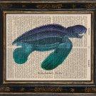 Sea Turtle Art Print on Antique Book Page Vintage Illustration