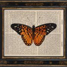 Butterfly Print on Antique Book Page Vintage Illustration