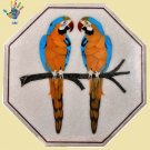 Marble Side Table Top Inlay Pietra Dura Parrot Design Handmade for Home Decor