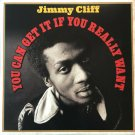 Jimmy Cliff ‎– You Can Get it if You Really Want Label: Not Now Music ‎ 2LPs