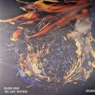 "BLACK DEER - The Last Tortuga EP - Vinyl (12"") NEW"