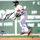 Dustin Pedroia Boston Red Sox Signed Autographed 8x10 Photo FANATICS