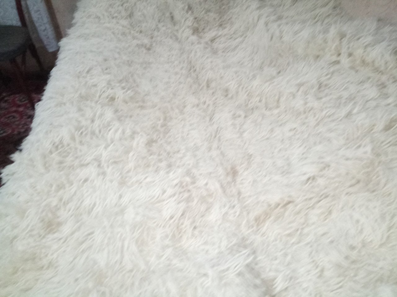 Rug  White  with fluffy long fringe Handwoven 100% Wool