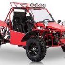 BMS 800cc V-Twin Dune Buggy is Fully assembled, Automatic with Reverse, 2WD/4WD Switchable, EFI