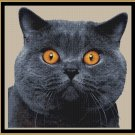 Cross Stitch Pattern- BLUE * EMAIL delivery*