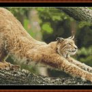 Cross Stitch Pattern- MORNING STRETCH * EMAIL delivery*
