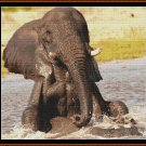 BATHTIME Cross Stitch Pattern [PDF by email] {elephant}