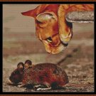 CAT & MOUSE Cross Stitch Pattern [PDF by email]