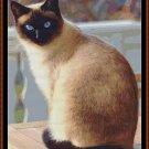 SHUSH, I'M HUNTING Cross Stitch Pattern [PDF by email] (cat feline siamese)