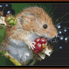 HARVEST MOUSE Cross Stitch Pattern [PDF by email] (rodent)