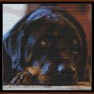 SLEEPY PUP 2 Cross Stitch Pattern [PDF by email] (canine dog)