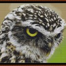 YES, HELLO! Cross Stitch Pattern [PDF by email] {owl bird}