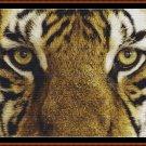 EYES - TIGER Cross Stitch Pattern [PDF by email]