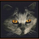 CAT STARE Cross Stitch Pattern [PDF by email]