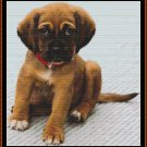 INNOCENT Cross Stitch Pattern [PDF by email] (canine dog)