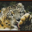 CLEAN PAWS Cross Stitch Pattern [PDF by email] {leopard}