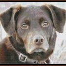 HOOCH Cross Stitch Pattern [PDF by email] (canine dog)