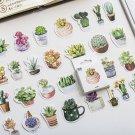 """""""Succulent Plants"""" 50pcs Lot Scrapbooking Stickers Card Album Decor Mix Stickers"""