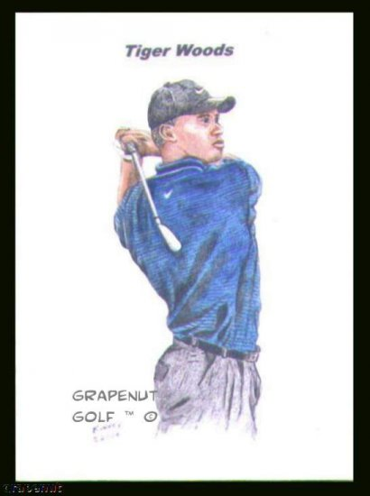 Tiger Woods #2 Kinney Original Art ACEO Golf Card NM