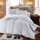 KING Down Comforter Egyptian Cotton Bed Bedroom ALLERGY FREE Feather White Comfy