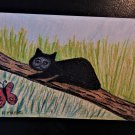 "Collector Art...Sleuthy The Cat... Cartoon Series #3 ""What's This? """