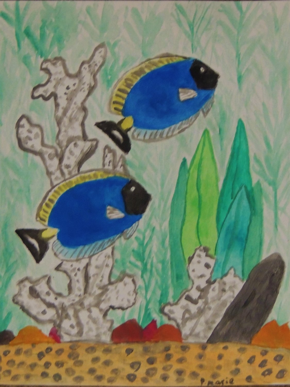 "Tropical Fish 8"" x 10"""